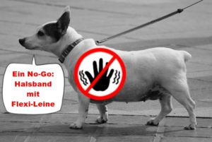 no go halsband mit flexi-leine