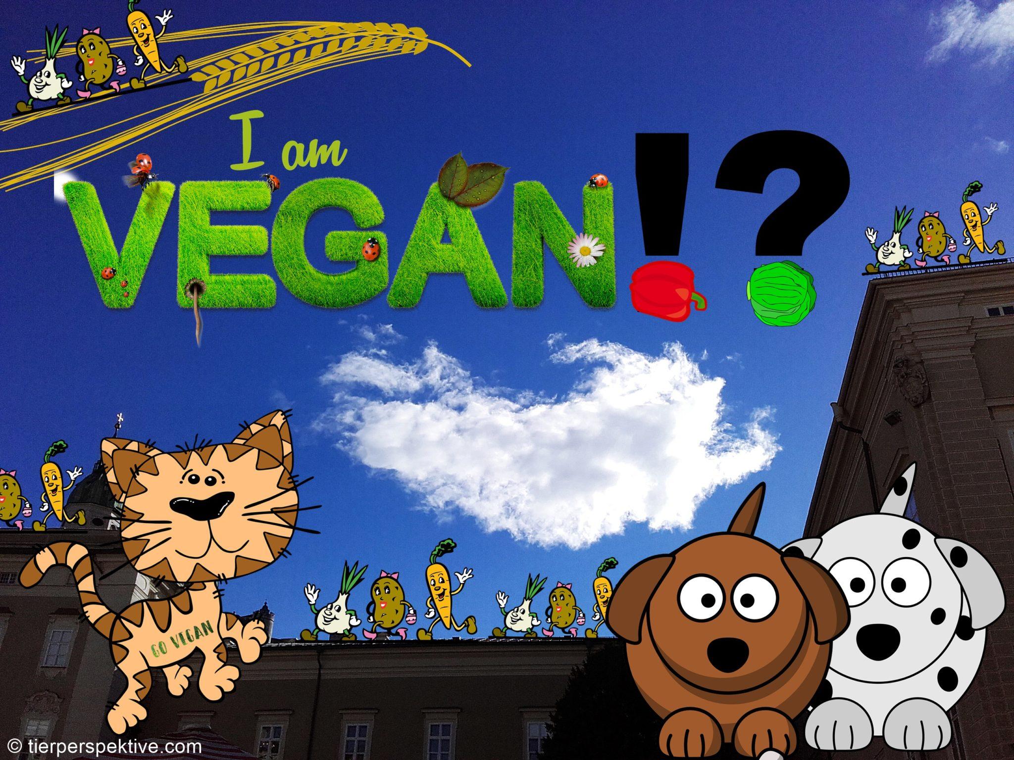 hund katze vegan vegetarisch ernähren