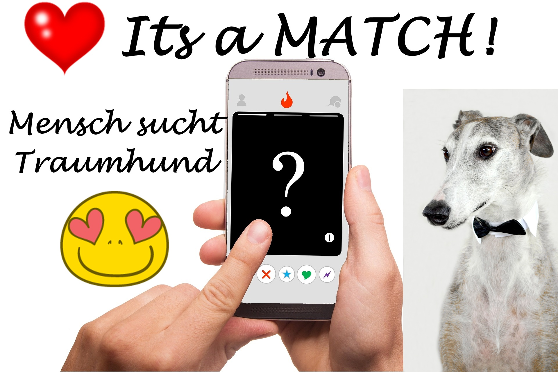Dating hunde